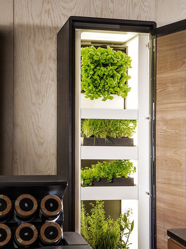 Hochwertiger Innenausbau, Vooking Konzeptküche für Vegetarier, Foto Michael Liebert